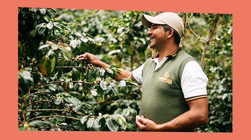 Koffieboer Fairtrade
